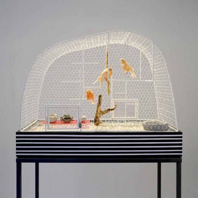 Volière Design Andrea Branzi